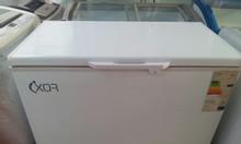 Tủ đông Ixor 260L ,đông lạnh nhanh