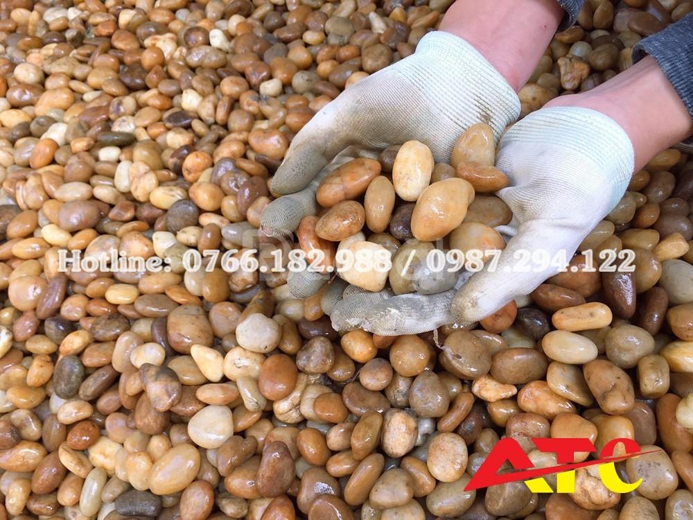 Bán sỏi trang trí màu vàng tại Hà Nội