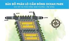 Bán đất nền trung tâm TP Cẩm Phả chỉ từ 14tr/m2 LH 0942.935.111