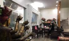 Bán nhà Nghi Tàm bên lẻ 70m, 1 nhà ra phố, ngõ nông, đi bộ ra Hồ Tây 5