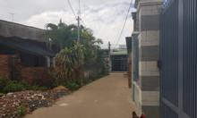 Bán gấp nhà ấp Bắc Hòa, xã Bắc Sơn,Trảng Bom, DT 230m2, SHR, giá tốt