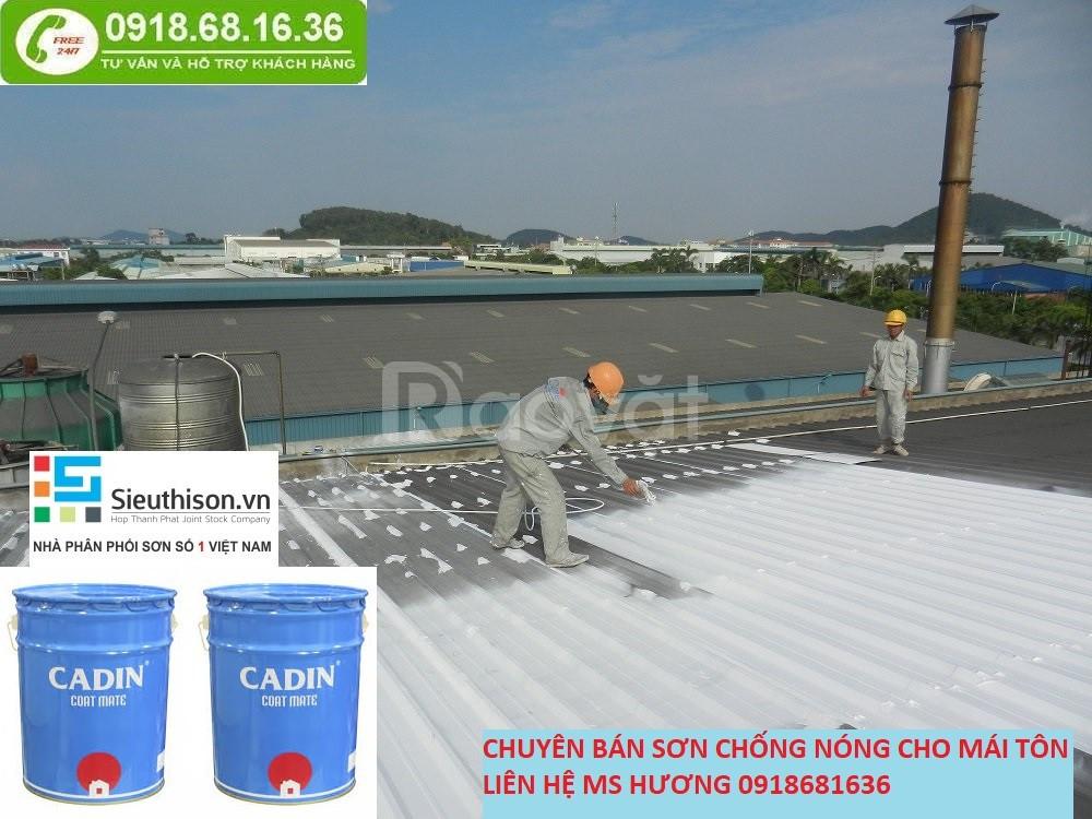 Địa chỉ bán sơn chống nóng cho mái tôn tại Long An giá rẻ