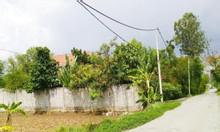 155m2 đất mặt tiền Nguyễn Văn Thời 1,95 tỷ có sổ hồng riêng