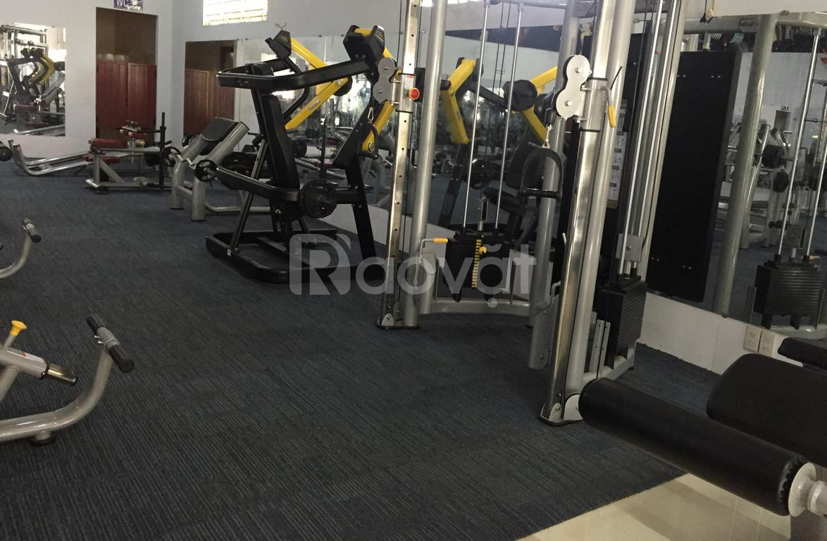 Cần thanh lý gấp dụng cụ gym nam nữ MBH nhập khẩu giá rẻ