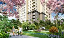 Cơ hội sở hữu căn hộ The View CK 10-12% TT 3 năm CĐT Tokyu Nhật