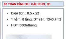 Chuyển nhượng building số 90 Trần Đình Xu, P.Cầu Kho, Q1