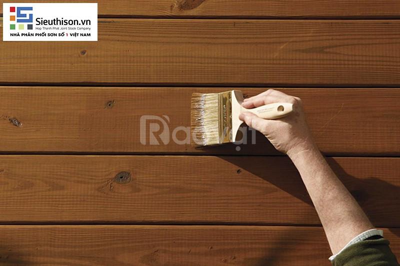 Tìm công ty thi công sơn gỗ chất lượng cao tại Bình Dương