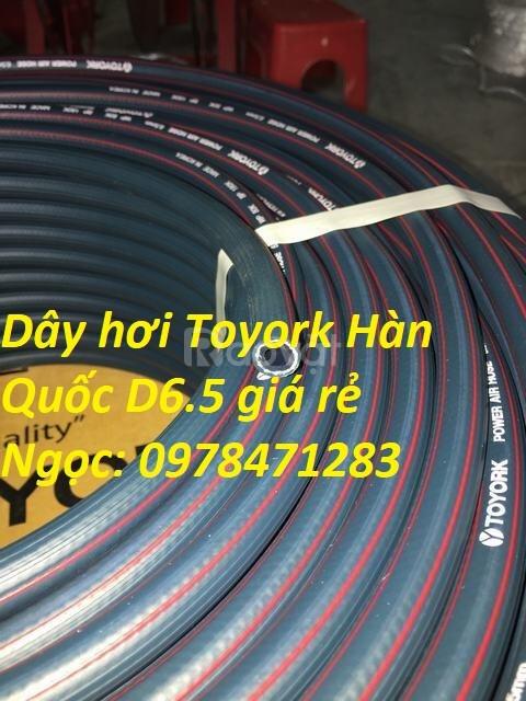 Dây hơi, ống dẫn hơi TOYORK Hàn Quốc D19 hàng có sẵn