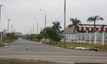 Bán và cho thuê đất, nhà xưởng công nghiệp ở các khu công nghiệp