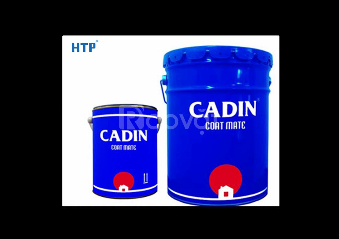 Phân phối sơn Epoxy Cadin cho sắt thép với giá rẻ Kiên Giang