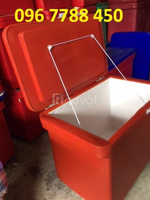 Thùng ướp lạnh 100 lít thailand giá rẻ