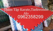 Thảm tập taewondo