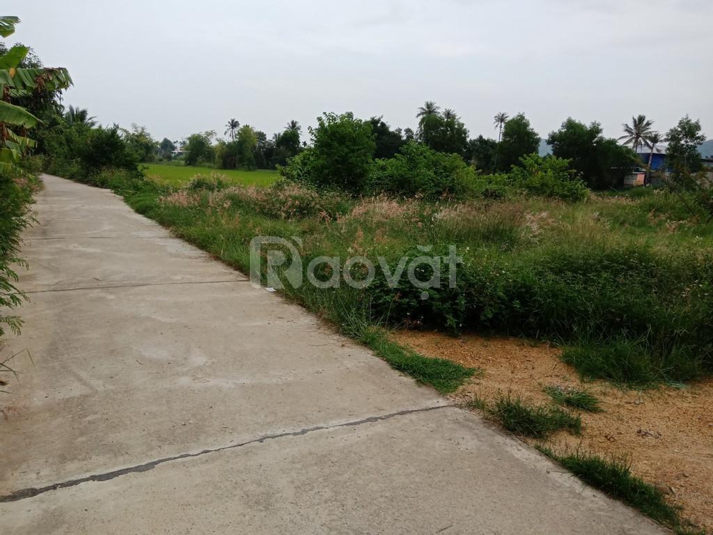 Bán đất thổ cư Diên An gần đường Võ Nguyên Giáp