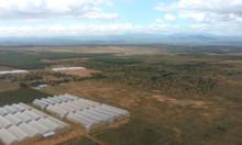 Bán đất sát khu nông nghiệp công nghệ cao, công viên safari 50-70k/m2
