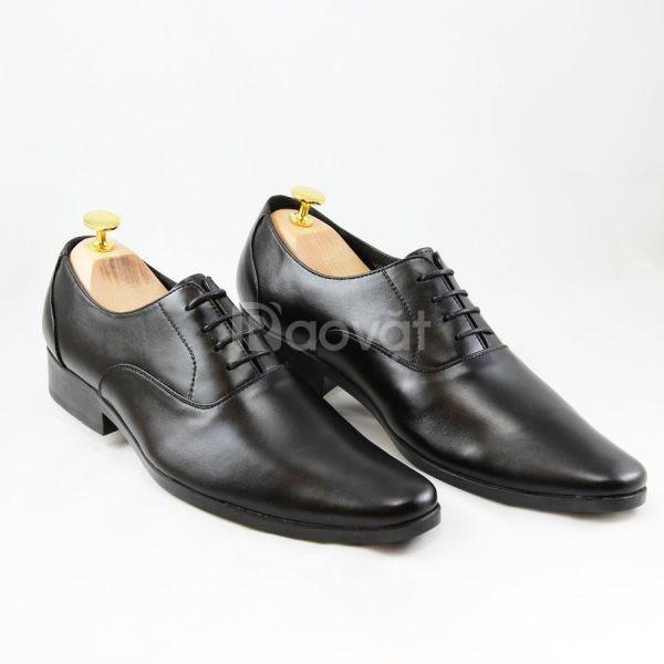 3 Mẫu giày tây công sở đẹp