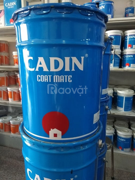 Chuyên cung cấp sơn kẽm đa năng Cadin 2 in 1, sơn kẽm không cần lót.