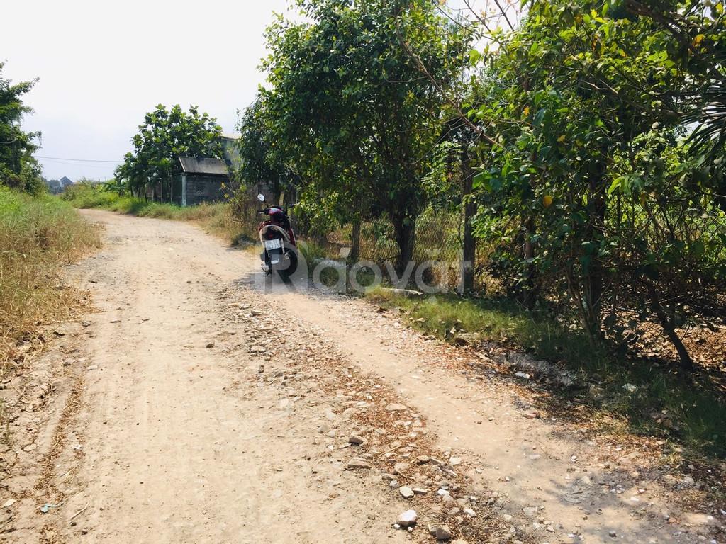 Chính chủ cần bán đất đất thổ cư xã Bình Lợi, Bình Chánh, giá rẻ
