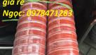 Ống Silicon chịu nhiệt hàng có sẵn (ảnh 4)