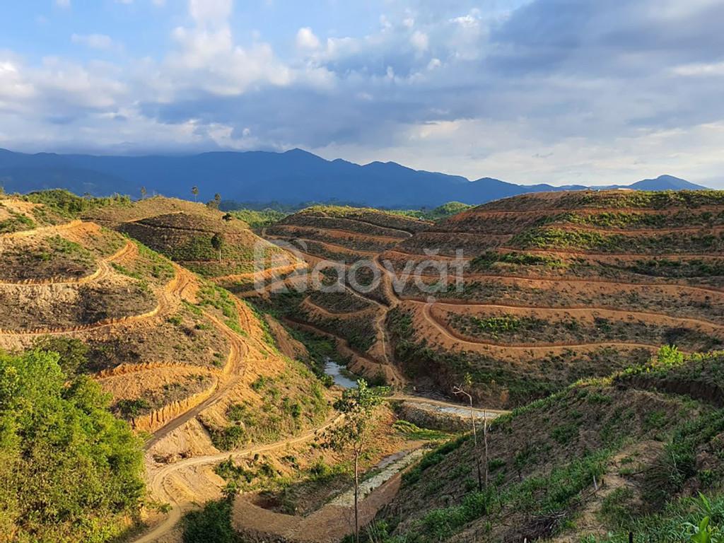Tiềm năng đầu tư nghỉ dưỡng sinh thái Lâm Nguyên kết hợp nông nghiệp