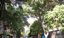 Bán nhà Ngụy Như Kon Tum Thanh Xuân 60m2, 5 tầng, ô tô tránh , kinh doanh, vỉa hè rộng, giá 13.1 Tỷ