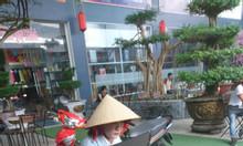 Bảng led huỳnh quán cho quán cafe tại Cà Mau