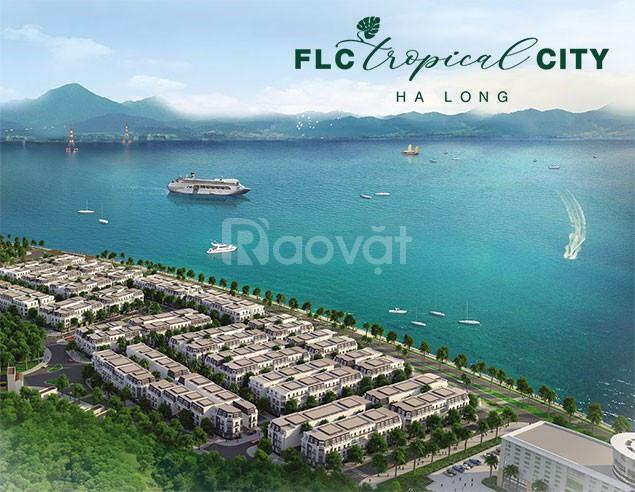 Cần bán gấp 5 lô đất liền kề dự án FLC Tropical Hạ Long giá tốt 15tr