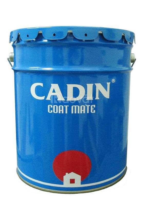 Sơn kẻ vạch đường Cadin CD34 màu đỏ/ vàng/ xanh chất lượng tốt