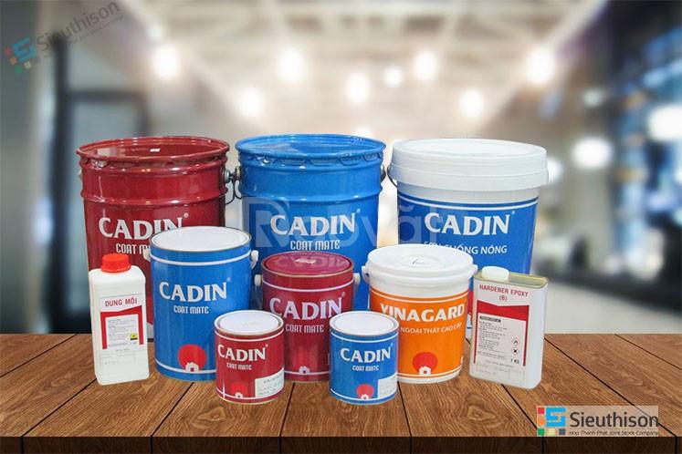 Địa chỉ công ty phân phối và nhận thi công sơn kẻ vạch epoxy Cadin