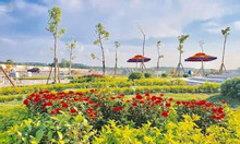 Đất sổ đỏ, mặt tiền đường QL13 cạnh TTHC Bàu Bàng, thổ cư 100%