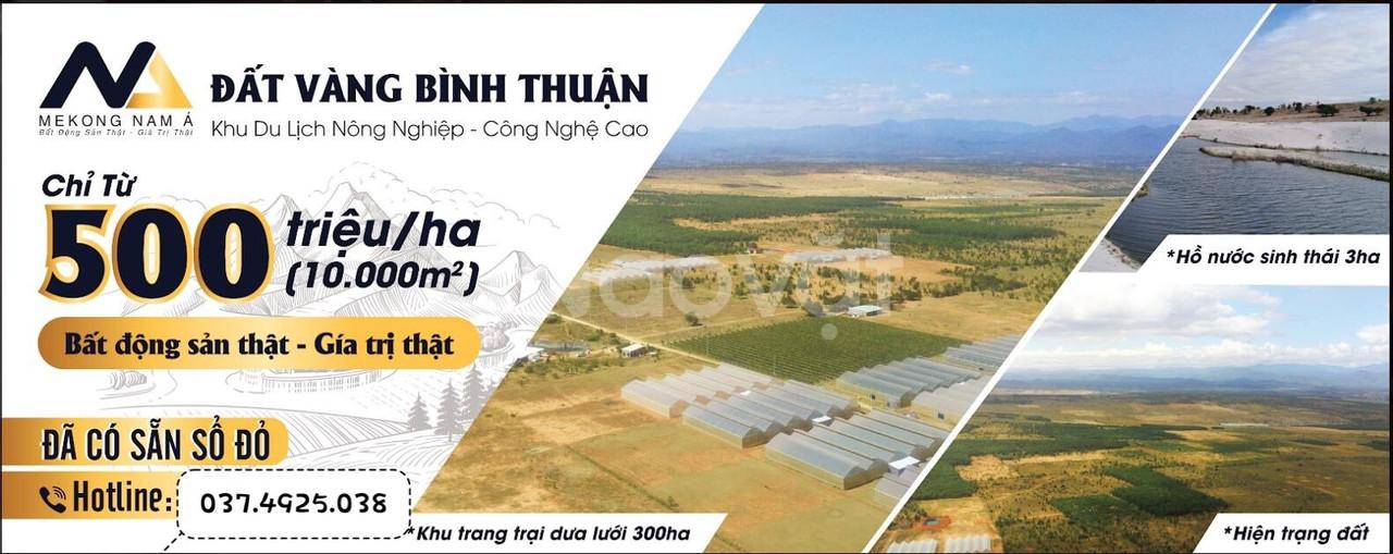 Đất nền Bình Thuận sổ hồng trao tay chỉ 500tr/ha