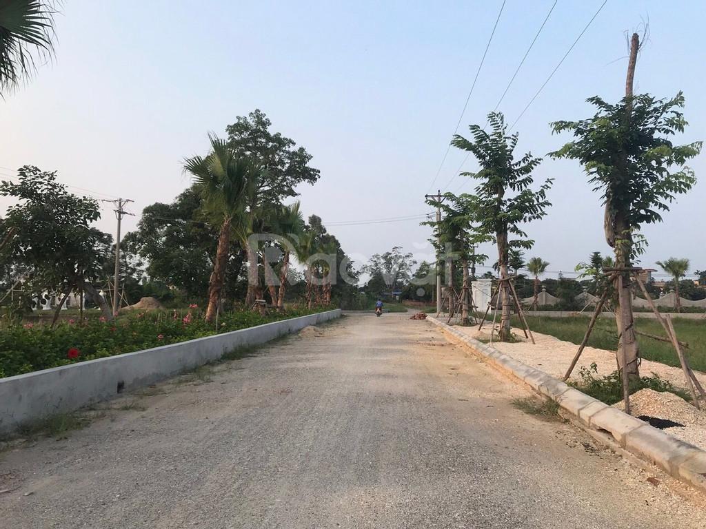 Đất nền chia lô đã có sổ đỏ tại huyện Hưng Hà, Thái Bình. 8 triệu/m2