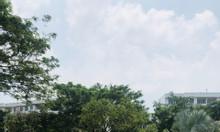 Bán đất thổ cư chính chủ trong khu dân cư Vĩnh Lộc Bình Chánh