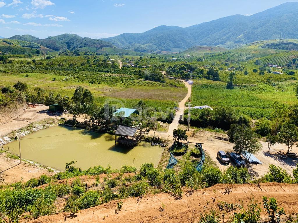 Trang trại Tân Lâm Nguyên thân thiện môi trường, mang đến lợi nhuận bề