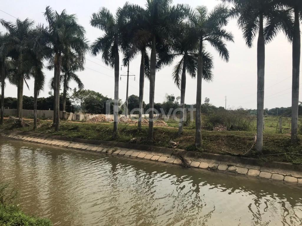 Bán đất trang trại DT 11000m2 Nam Hồng Đông Anh Hà Nội.