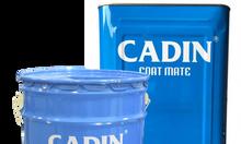Sơn kẻ vạch nhà xưởng Cadin