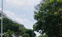 Bán gấp đất đối diện bệnh viện Chợ Rẫy 2 giá hợp lý còn thương lượng