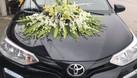 Cho thuê ôtô tự lái Giao Thuỷ (ảnh 4)