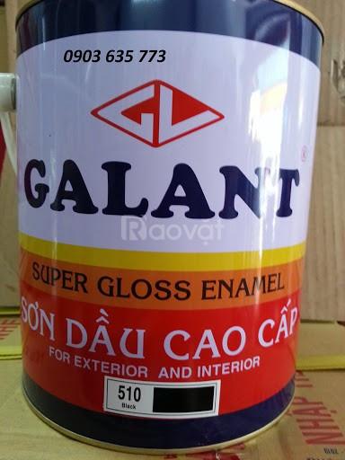 Sơn dầu galant giá rẻ Sài Gòn cho các cửa hàng đại lý