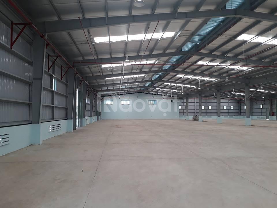 Cho thuê 5000 m2 đất làm kho xưởng khu Vân Đồn Đà Nẵng