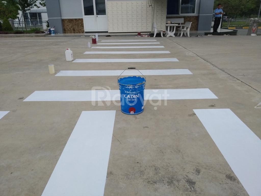 Chuyên cung cấp sơn kẻ vạch cho đường băng sân bay chất lượng