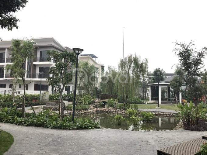 Bán nhà liền kề ST4 Gamuda 112m2, xây 3 tầng, trả chậm 3 năm, (ảnh 4)