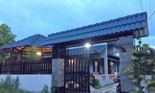 Bán biệt thự mini Bình Chánh giá ranh Bình Tân.