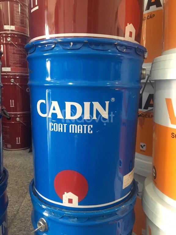 Đại lý sơn kẻ vạch Cadin màu trắng - Lon 5kg giá rẻ TP.HCM