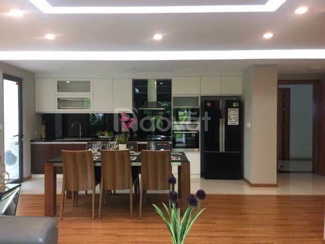 Bán căn hộ 65m2 2 phòng ngủ tại dự án Hồng Hà Eco City