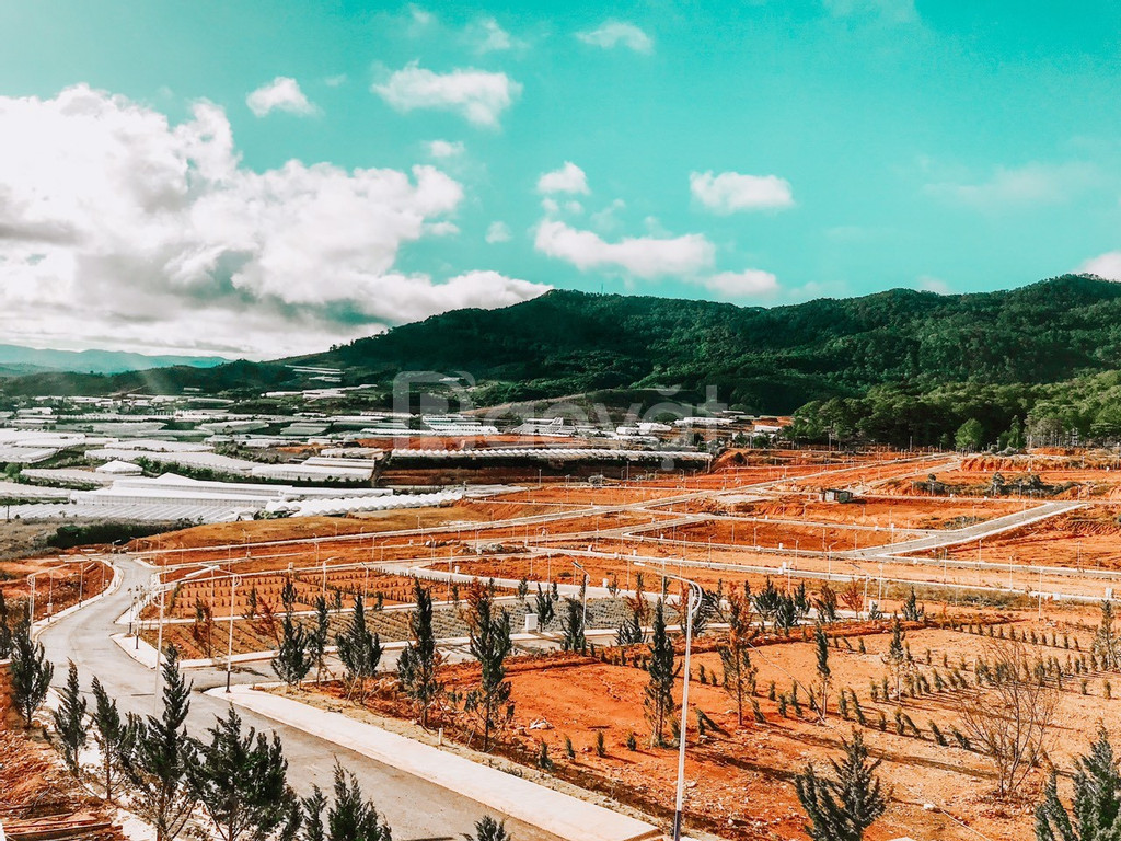 Những lô đất nền cuối cùng tại Langbiang Town - Gía rẻ bất ngờ !