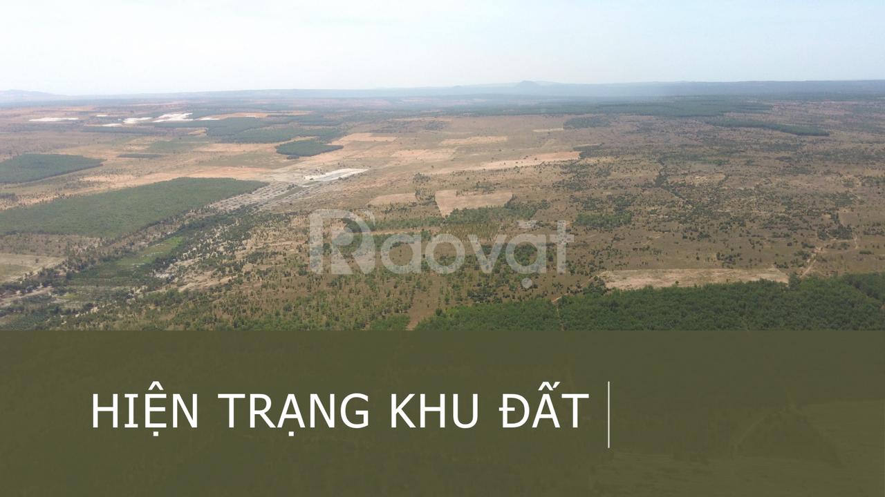 Đầu tư đất vườn Bình Thuận lợi nhuận cao