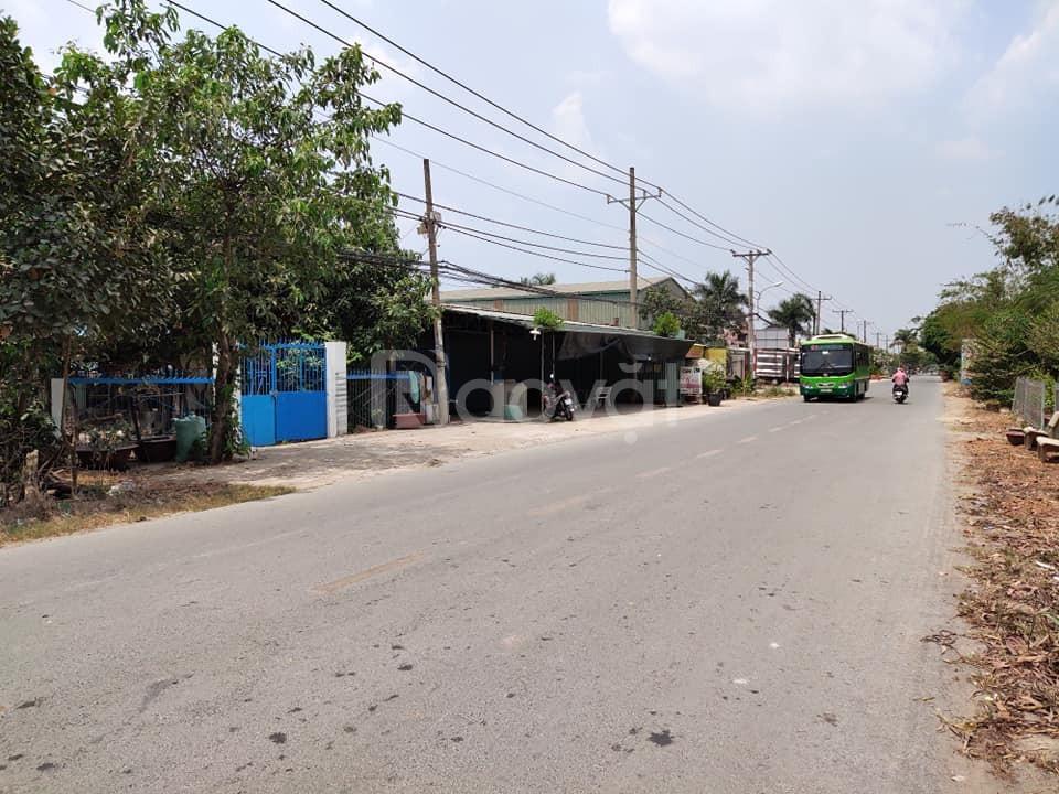 Đất 2 mặt tiền Trần Văn Giàu Bình Chánh