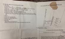 Bán 1000m2 đất trồng cây lâu năm tại Thiện Nghiệp, Phan Thiết