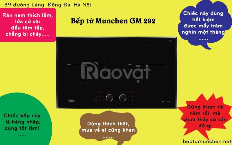 Bếp từ Munchen GM 292