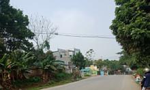 Bán đất đẹp  khu 16  Tiên Kiên - Lâm Thao - Phú Thọ  500m2